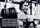 Arnold Schwarzenegger Quote About Pain. Muscle/Bodybuilding Print/Poster. Sizes: A4/A3/A2/A1 (002372)